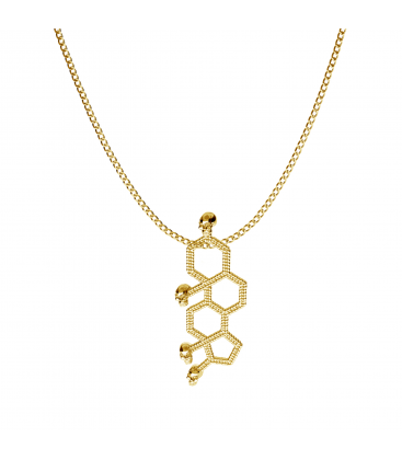 Testosterone chemical fomule necklace 925