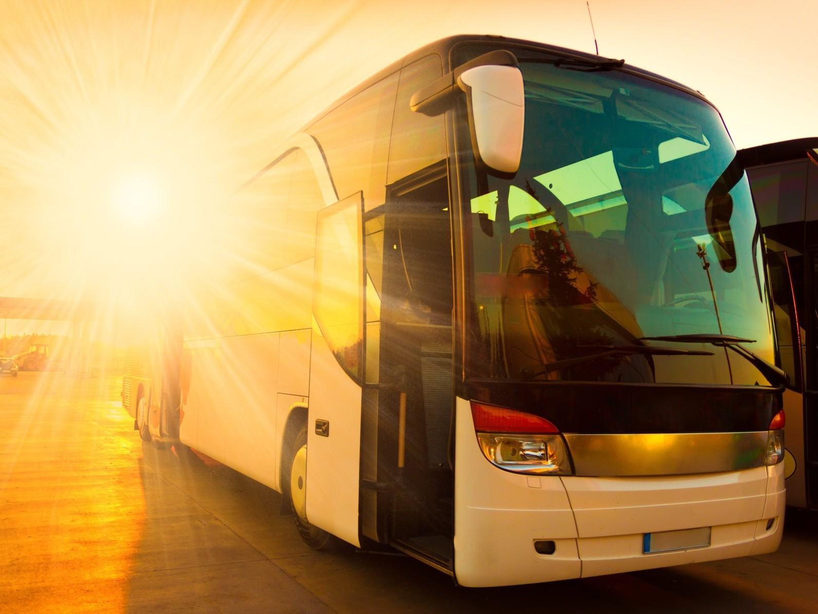 Autobus Rzeszów - Ernestówka oraz powrotny